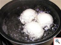boiling_eggWinCE